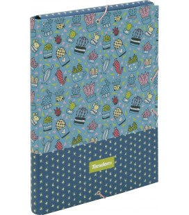 Carpeta Folio C/Solapa y Goma Tandem Cactus